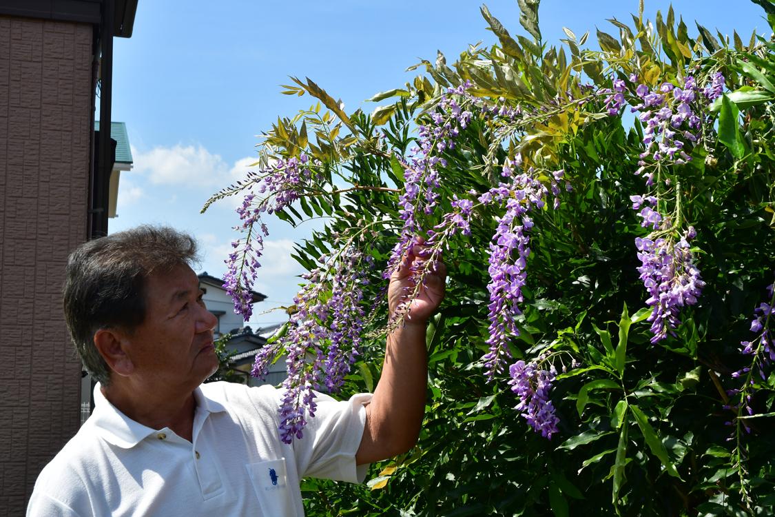 花を咲かせたフジと野村さん