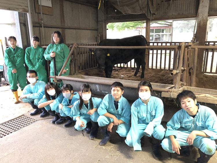 出荷した牛と牛部の生徒