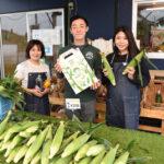 採れたてトウモロコシを販売 「本田農園」直売所開店