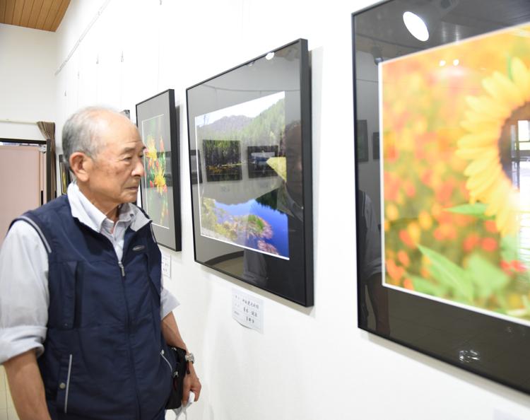 展示を見る菱木さん
