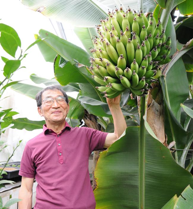 育ったバナナと、飛田さん
